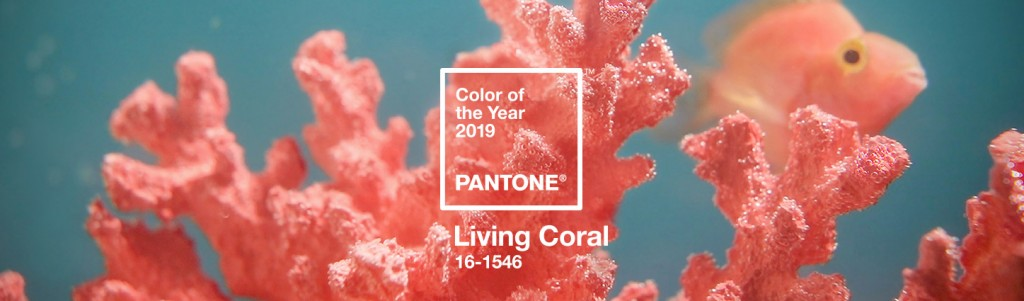 【living-coral_01】
